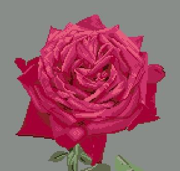 https://i2.wp.com/sd-5.archive-host.com/membres/images/164353825412355948/portrait_de_rose_1_wordpress.jpg