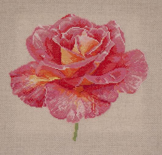 https://i2.wp.com/sd-5.archive-host.com/membres/images/164353825412355948/portrait_rose_4_patou_GP.jpg