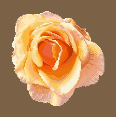 https://i2.wp.com/sd-5.archive-host.com/membres/images/164353825412355948/portrait_rose_5.JPG