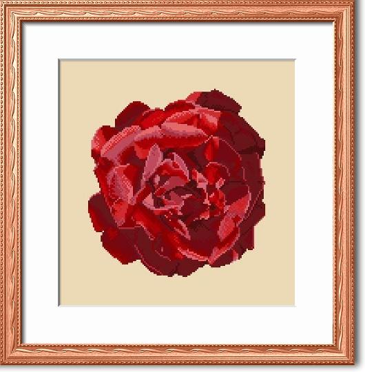 https://i2.wp.com/sd-5.archive-host.com/membres/images/164353825412355948/portrait_rose_8_cadre.jpg