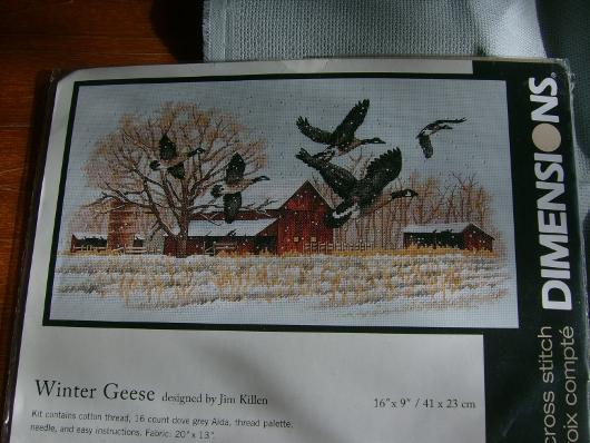 https://i2.wp.com/sd-5.archive-host.com/membres/images/164353825412355948/winter_geese_modele.JPG