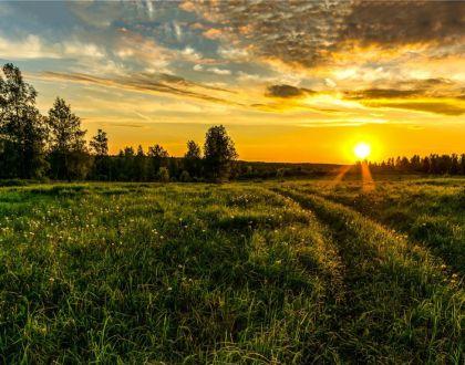 Terugblik vesperdienst | Kerkgenootschap der Zevende-dags Adventisten