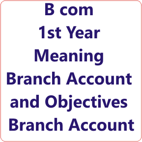 Meaning of Branch Account and Objectives of Financial Accounting Notes in Hindi