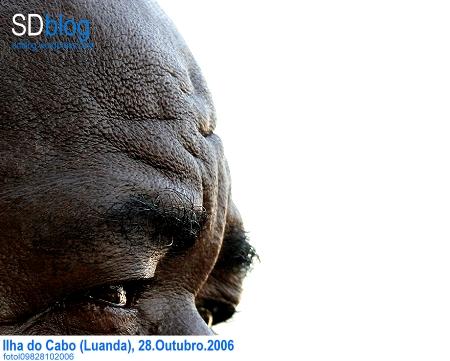 f09828102006-l.jpg