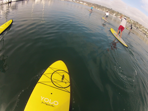 Young Adults Go Paddle Boarding