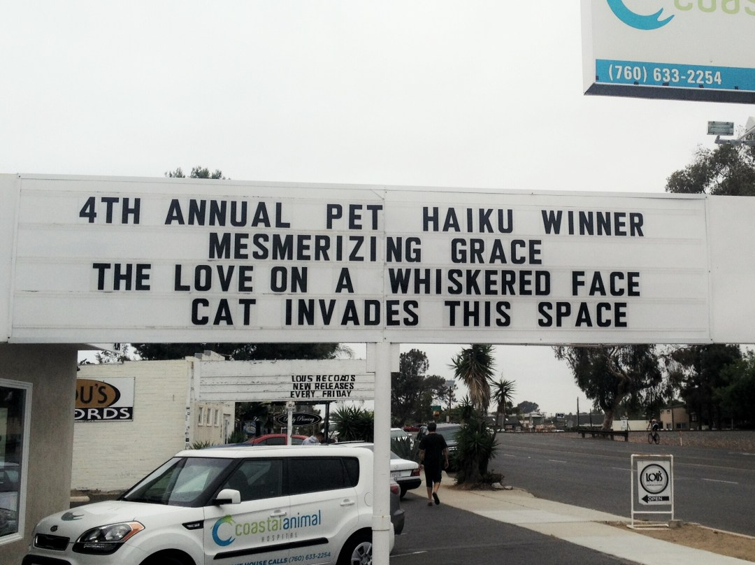 4th Annual Pet Haiku Winner - Reader's Choice