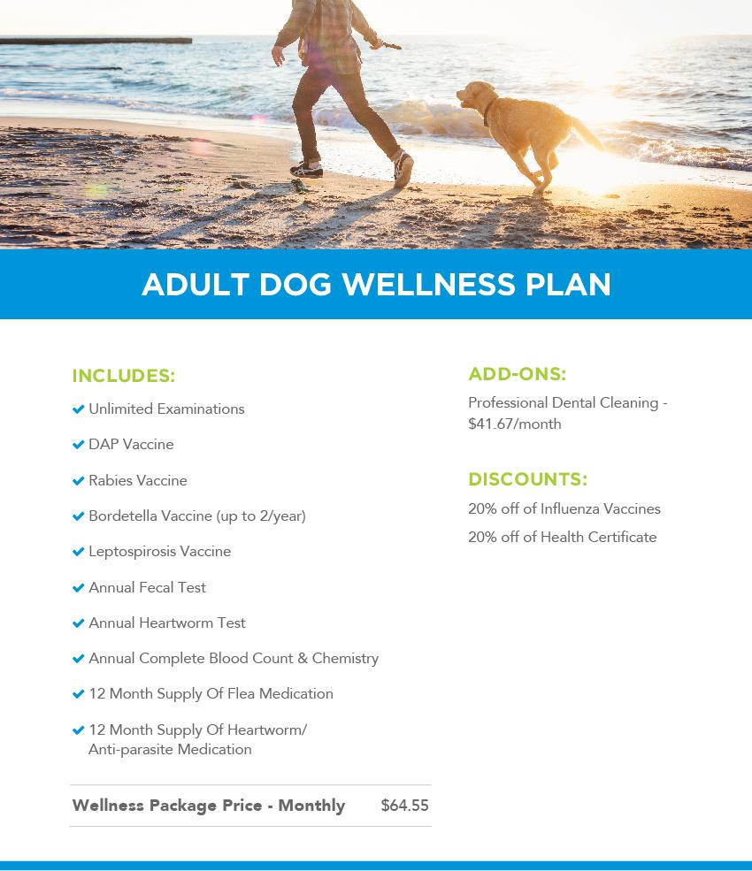 Adult dog wellness plans header image