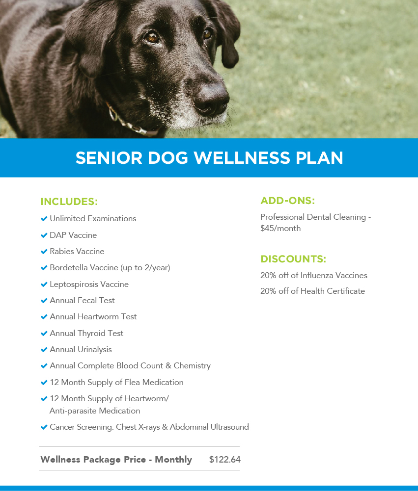 Adult dog wellness plan description and price