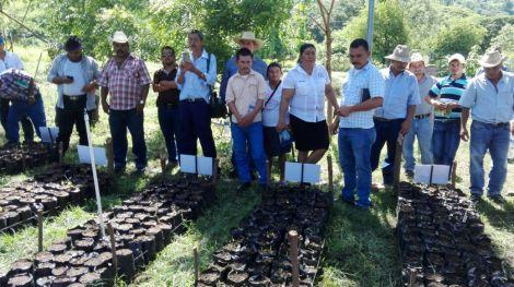 5 Programa de Reforestación- 04-09-2017