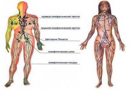pierdere în greutate pentru suferinzi de artrită reumatoidă