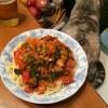おもてなし - 久しぶりに会う甥の手料理はスパゲッティ。ルーは肉を使わずあっさり味のボク向きに。絶品。レンコンのスライスフライは酒のつまみに。これまた美味。