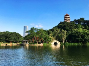 Zhongshan, Zhongshan City – My Experience Living in a Prefecture-Level City, SDE Seadragon Education