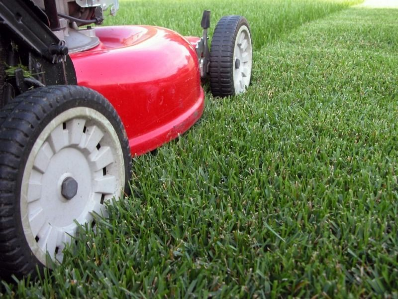 Ground maintenance & Contract Grass Cutting