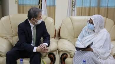 وزيرةالتعليم العالي تبحث مع سفيري اليابان وقطر تطوير العلاقات العلمية