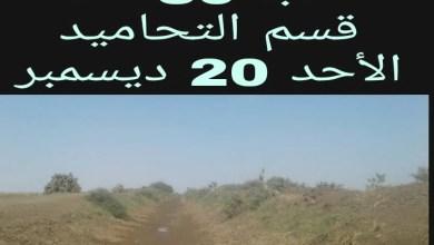العطش يهدد محصول القمح بمكتب النالة في مشروع الجزيرة
