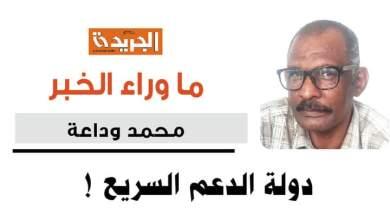 محمد وداعة يكتب : دولة الدعم السريع !