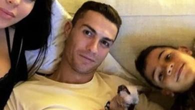 """رونالدو يرسل قطه """"النادر"""" للعلاج بإسبانيا بعد دهسه بسيارة"""
