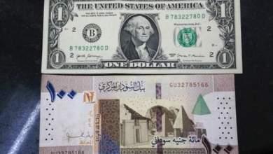 ماذا يعني تعويم العملة ....