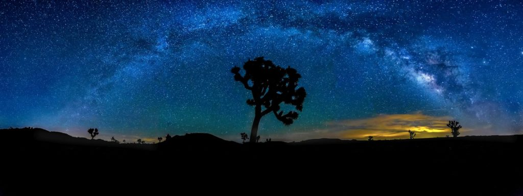 Hon - Peter Tellone - Joshua Tree Milky Way New Moon June 2016
