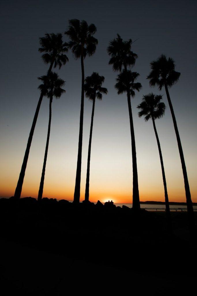 Dan Bucko - Waiting For The Sunset, Coronado