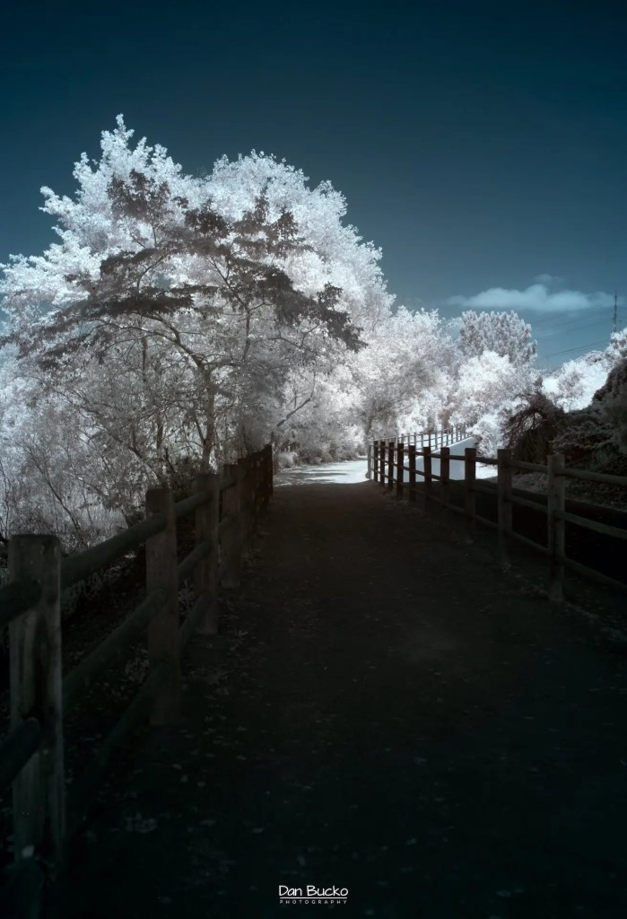 Daniel Bucko - Under The Bridge (Infrared)