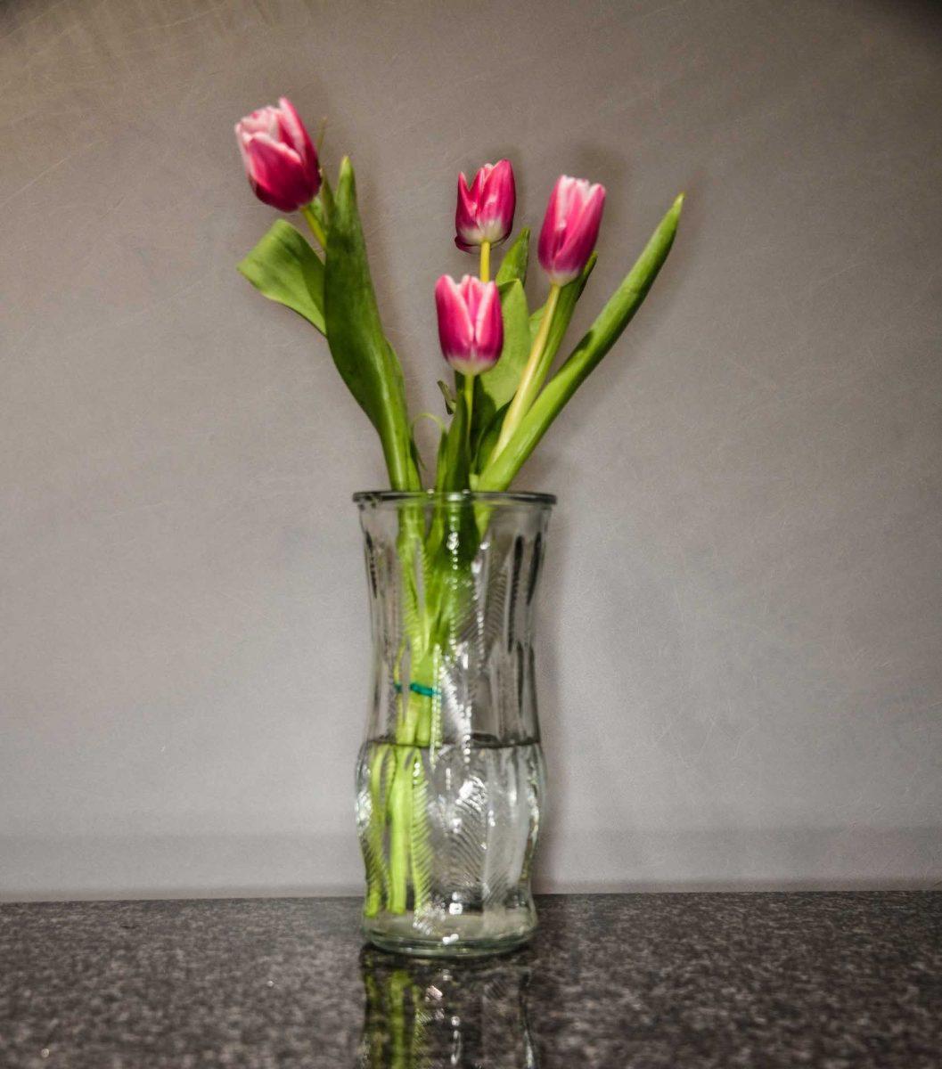 Randy Siegel - Four Tulips
