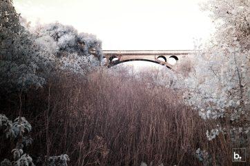 Dan Bucko - 02-TheOldBridge - Spanning a Divide