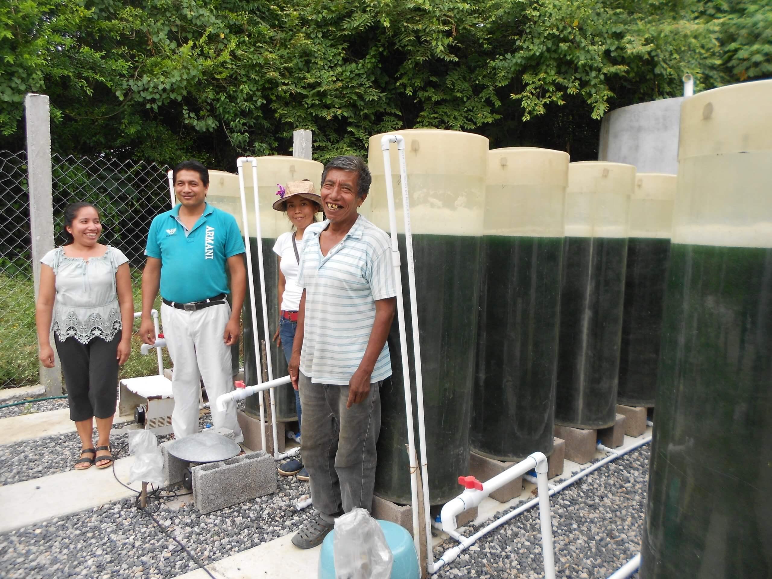 Granjas de alga espirulina para familias tének mal alimentadas de la Huasteca Potosina