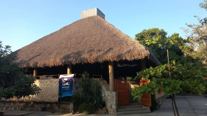 Museo Mazunte: acción social para restaurar la biodiversidad