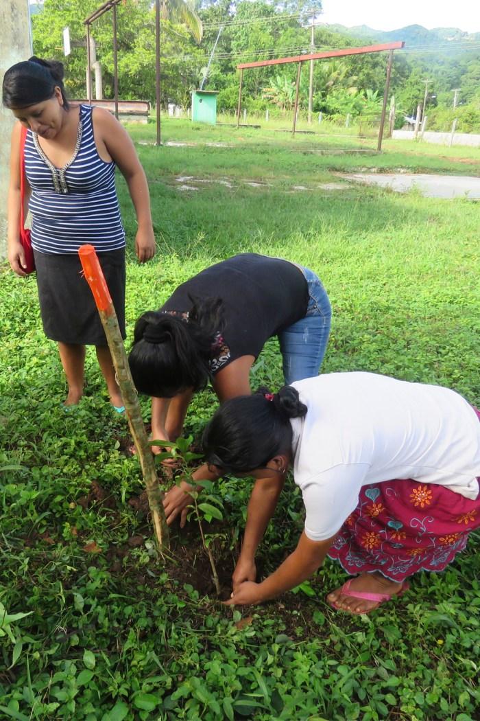 mujeres Bienestar social, conservación de la biodiversidad y sostenibilidad en la cuenca del Usumacinta