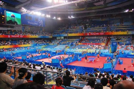 The Table Tennis Stadium