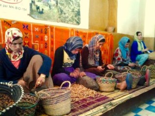 The real hard working ladies who make argon oil. They don't look so happy, but they have to work wherever they can to make a life for themselves in the desert.