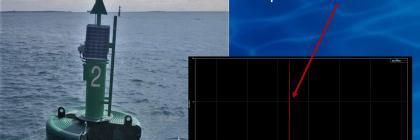 ship strike alert SVS 603