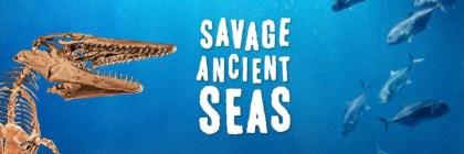 Mote Savage Ancient Seas
