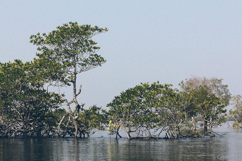 koh-kong-cambodge-20
