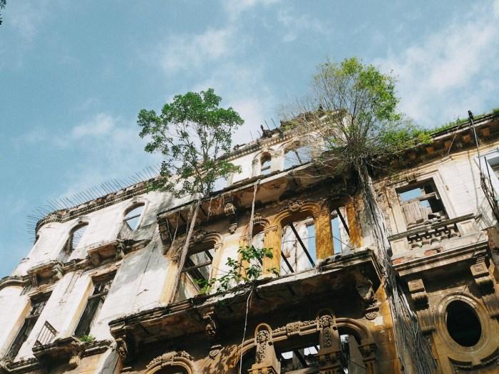 immeuble envahi par la végétation la havane