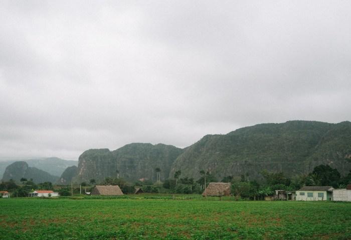 paysage massif calcaires vinales