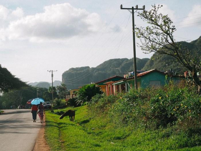 paysage à vinales cuba