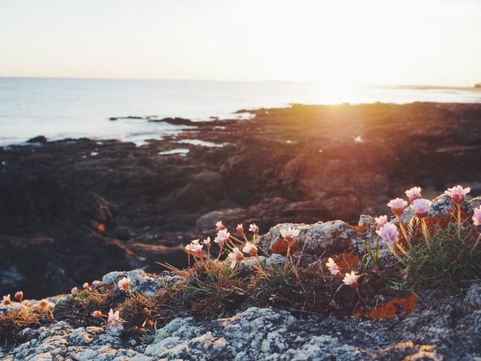 coucher de soleil sur l'ocean