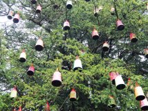 tree with lampshades - closer