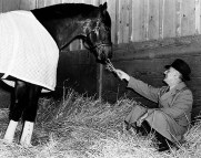 seabiscuit_and_charles-howard
