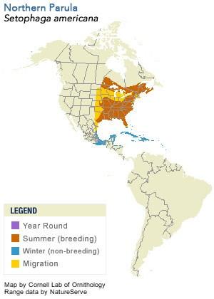 Range Map of Northern Parula - Cornell Lab of Ornithology