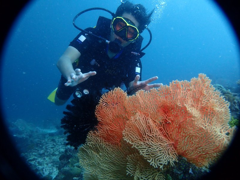 Why Dive with Us?