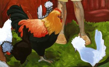 robbie's chickens (2)