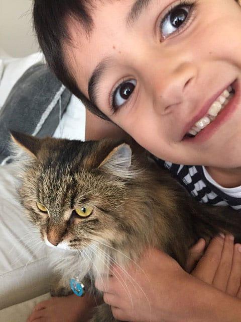 Siberian kitten Michonne with friend