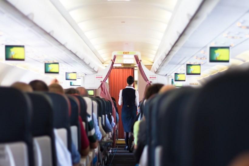 flight.jpg