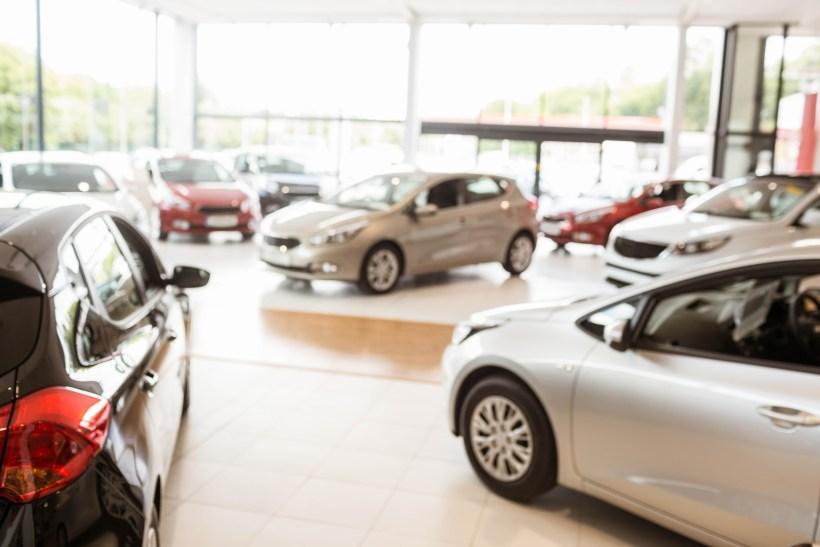 car shopping 2.jpg