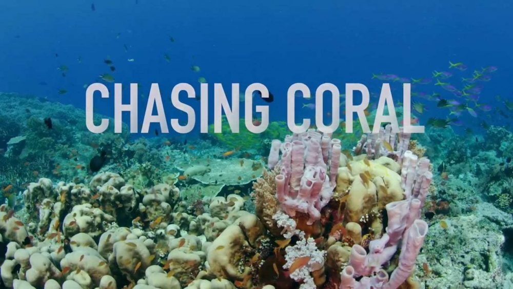 Watch Chasing Coral - a climate change documentary about the disappearance of coral reefs