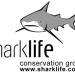 The Sharklife Conservation Group logo featuring a grey cartoon shark.