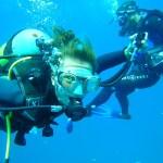 Volunteer divers on a survey